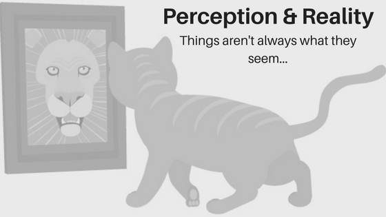 Perception & Reality: Things Aren't Always As They Seem